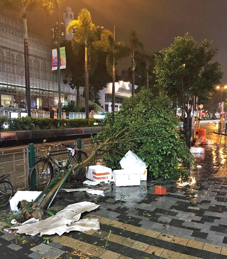 8-18-Stones_Messe-HGK_Taifun