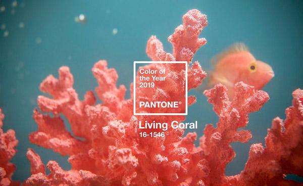 Living Coral - Pantone